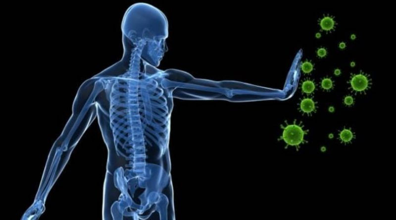 Importance of immunity in daily life